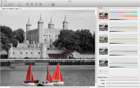Use Tintii to draw focus to a subject defined by its colour